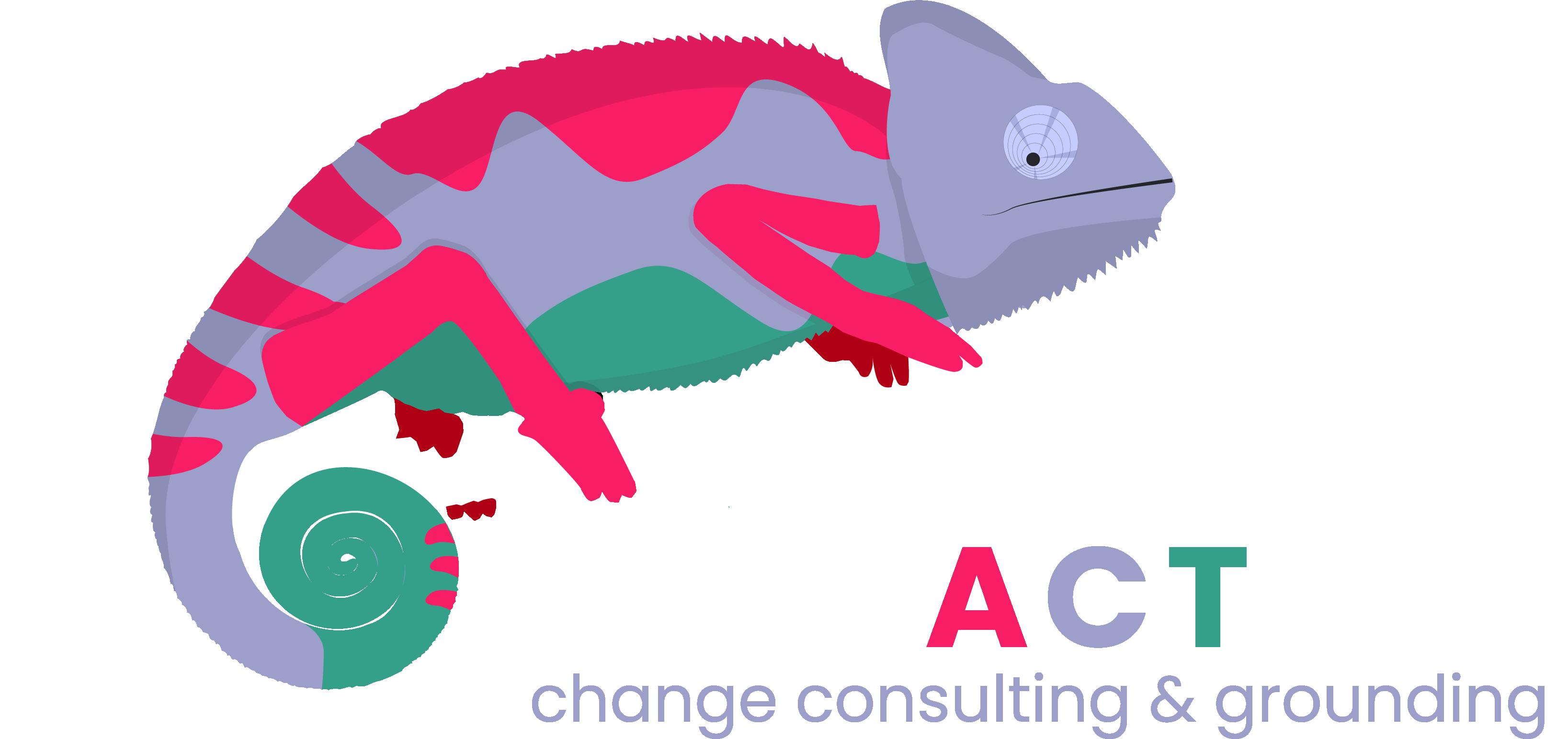 VARIACTION Logo